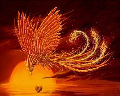 Феникс символ солнца